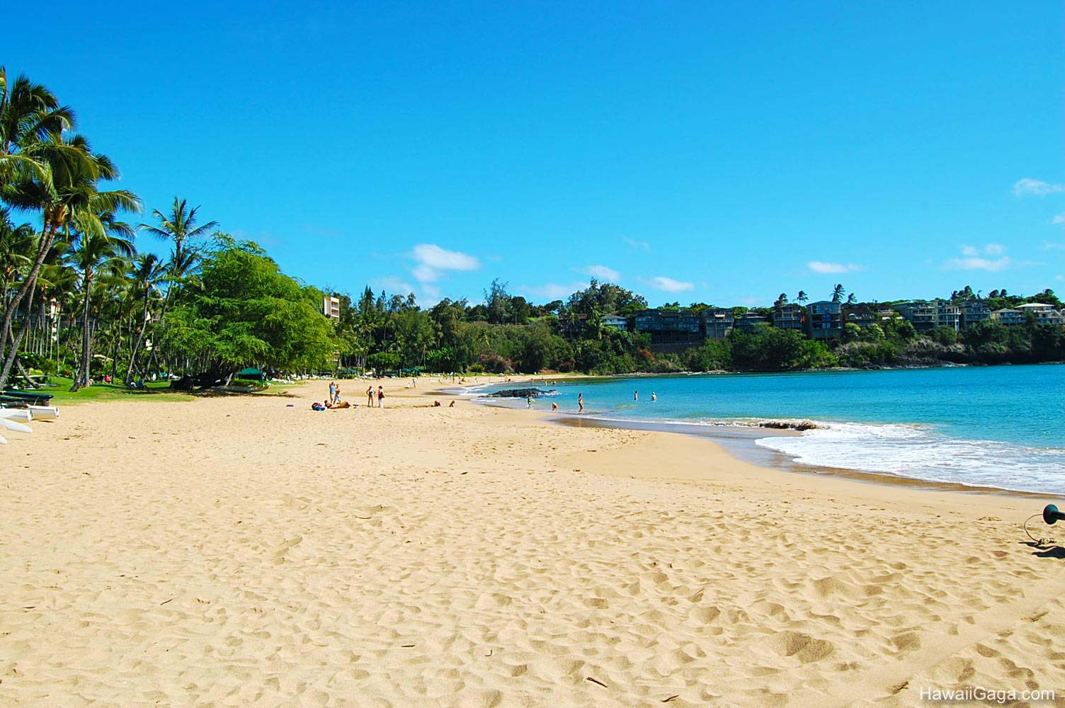 Hawaii In Contrasts Sunny Vs Stormy Day furthermore Map in addition Hawaii Vacation Deals News February 19 2015 as well United States Software Map besides Christmas Greeting Card From Hawaii. on discount hawaii car rental