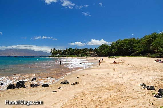 Palauea Beach Rentals