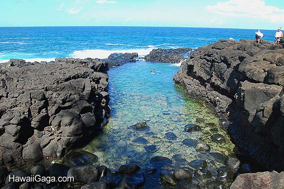 Queens Bath Kauai – Kauai Tourist Attractions Map