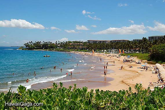 Car Rental Location In Maui Car Get Free Image About