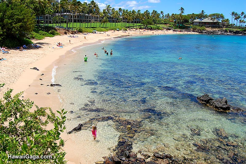 The Hawaiian Islands – Maui Tourist Map