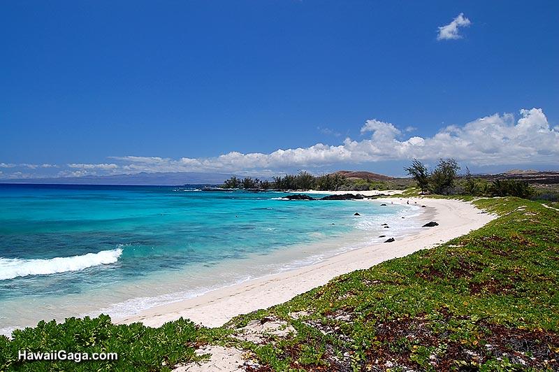 Big Island Condo Rentals Beach