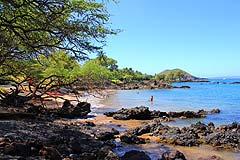 Makena Landing Beach Park thumbnail