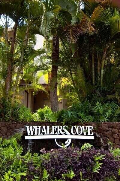 Whalers Cove 1 Bedroom Deluxe