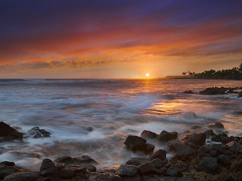 Kuhio Shores 215