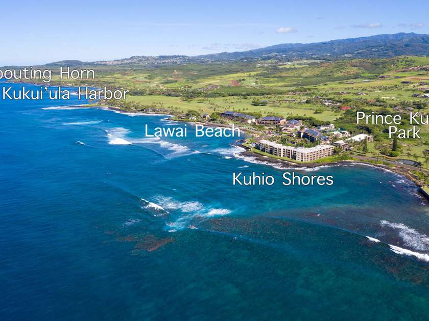 Kuhio Shores 303