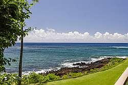 Kuhio Shores 201