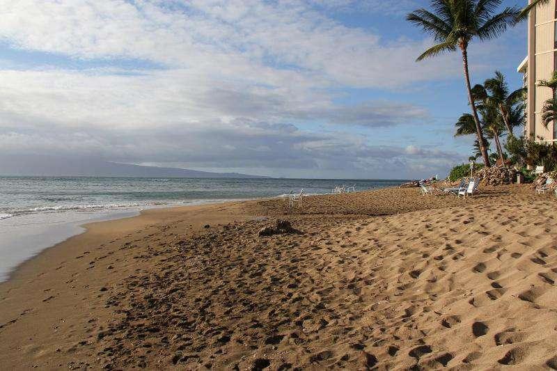 Maui Oceanfront Paradise