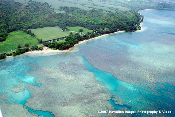 More Anini Beach Aerial Pictures