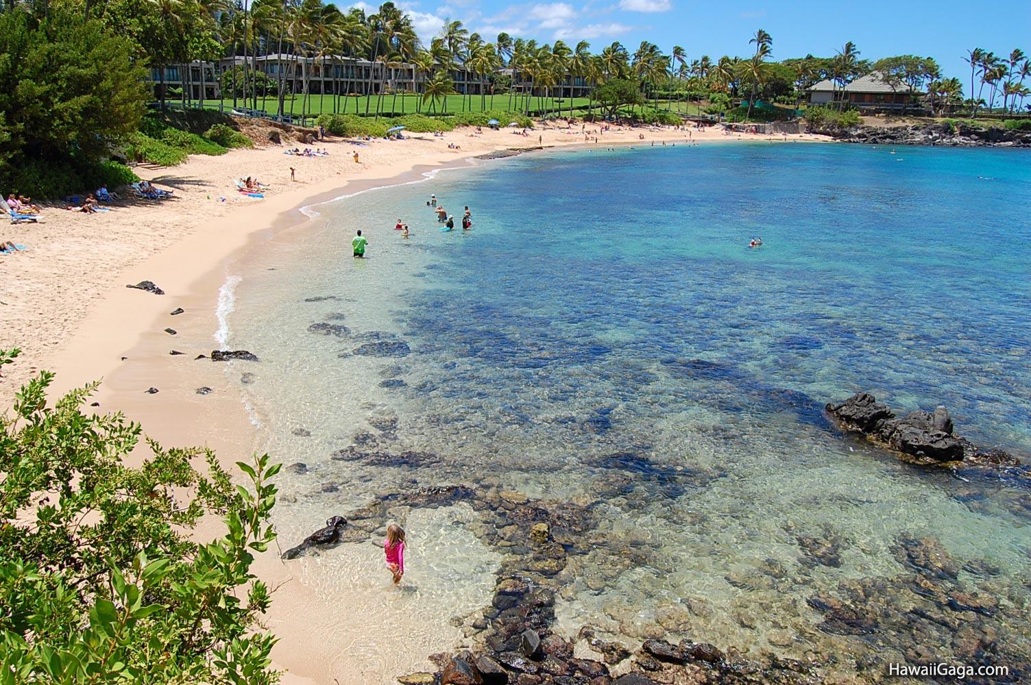 Kapalua Beach Maui