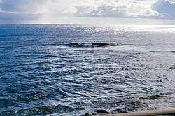 Kuhio Shores 416